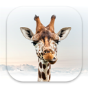 Apps Like Girafi & Comparison with Popular Alternatives For Today