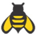 Keyword Bee