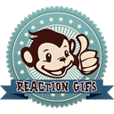 Apps Like Reaction GIFs & Comparison with Popular Alternatives For Today
